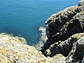 A view into the depths - geograph.org.uk - 910235.jpg
