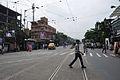 Acharya Prafulla Chandra Ray Road - Maniktala - Kolkata 2011-10-22 6064.JPG