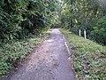 Agou road.jpg