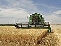 Agriculture in Volgograd Oblast 002.JPG