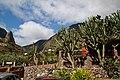 Agulo, Santa Cruz de Tenerife, Spain - panoramio (3).jpg