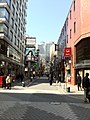 Akasaka Hitotsugi Street ,Tokyo-pref. - panoramio.jpg
