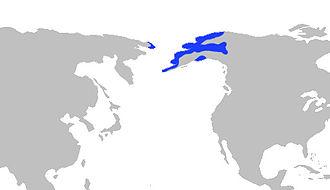 Alaska blackfish - Image: Alaskablackfishrange