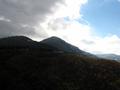 Alle pendici del Monte Serranetta - bosco misto di faggi ed abeti.PNG