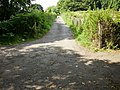 Allotment path to Cae Perllan road - geograph.org.uk - 1441423.jpg
