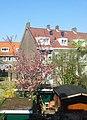 Amsterdam 05 2013 - panoramio (8).jpg