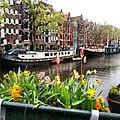 Amsterdam with flowers.jpg