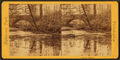 An icy mirror, from Robert N. Dennis collection of stereoscopic views.png
