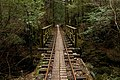 Anbo Forest Railway 05.jpg