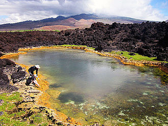 Anchialine pool - Ecologists collecting organisms from an anchialine pool in Maui
