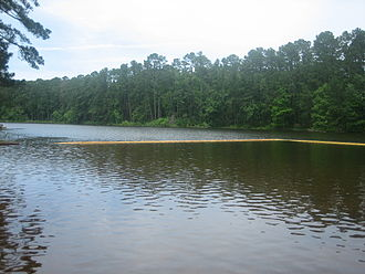 Houston County, Texas - Ratcliff Lake Recreation Area is located in the Davy Crockett National Forest in Houston County east of Crockett.