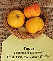 Apfel 150 Topaz (fcm).jpg