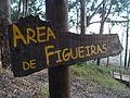 Area de Figueiras.101 - Islas Cies.JPG