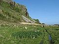 Arran Coastal Way - geograph.org.uk - 1288997.jpg