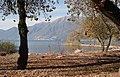 Ascona, Strandpromenade beim Golfplatz - panoramio.jpg