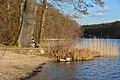 Aussteiger Wintertreffen 2014 - panoramio (1).jpg