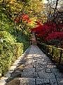 Autamn Leaves, Tamagawaen - panoramio - MAKIKO OMOKAWA.jpg