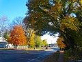 Autumn Colors on the Northside of Madison - panoramio.jpg