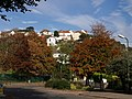 Autumn colour in Torre - geograph.org.uk - 601917.jpg