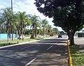 Av. Mato Grosso - panoramio (4).jpg