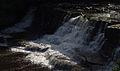Aysgarth Falls MMB 20.jpg