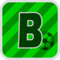 BCE Logo.png
