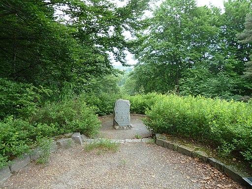 Schüttaufhöhe im Bergpark (UNESCO-Welterbe Muskauer Park(Fürst-Pückler-Park), Bad Muskau)