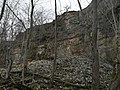 Baltic Klint rockfall in NE Estonia.jpg