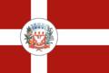 Bandeira Marapoama.png