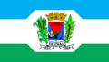Bandeira do Municipio de Faxinal.png