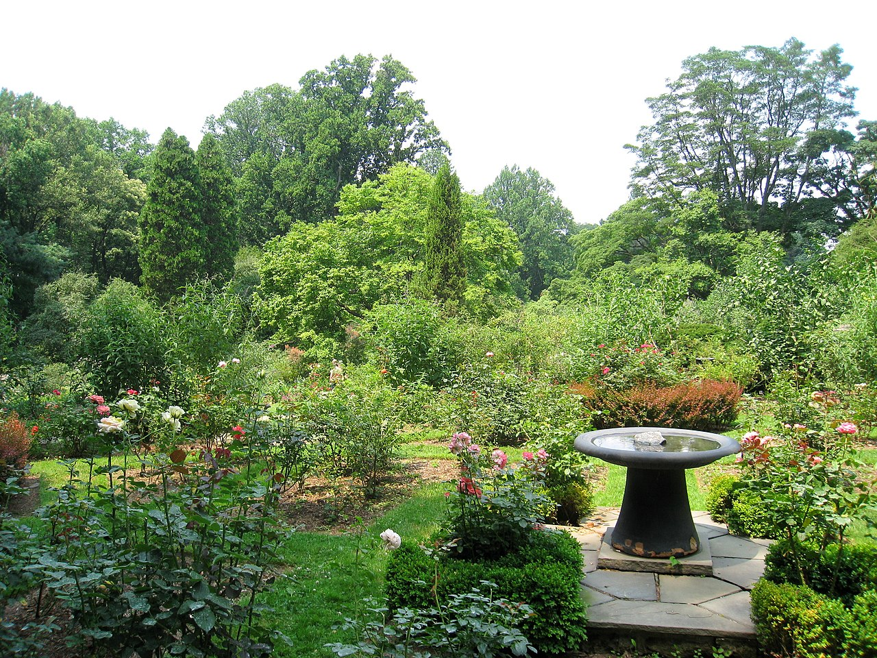 File:Barnes Foundation, Merion, PA - arboretum and garden ...