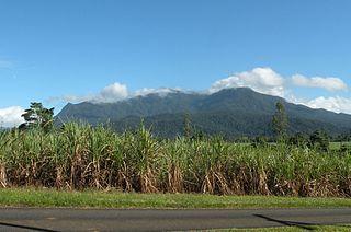 Mount Bartle Frere mountain in Queensland, Australia
