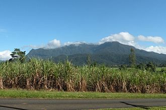 Mount Bartle Frere - View from the south east