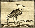 Basilisk born from egg of ibis.jpg