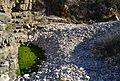 Bassa verda i còdols del riu Gorgos.JPG