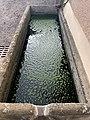 Bassin Eau Rue École - Solutré-Pouilly (FR71) - 2021-03-02 - 2.jpg