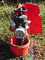 Bayard fire hydrant - opened.jpg