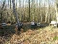 Beehives, Waydown Wood - geograph.org.uk - 344609.jpg