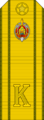 Belarus MIA—21 Cadet-Master Sergeant rank insignia (Olive)—Removable.png