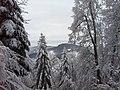 Belchen-Chambersberg - panoramio (5).jpg