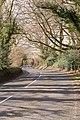 Belmore Lane - geograph.org.uk - 1186985.jpg