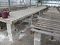 Benches (6167714364).jpg