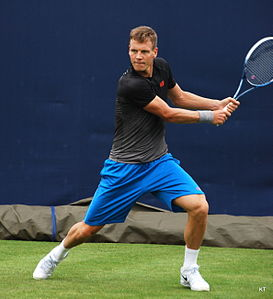 Berdych at Queens 2013.jpg