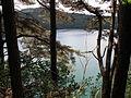 Besse Lac Pavin3.JPG
