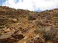 Betancuria, 35637, Las Palmas, Spain - panoramio (192).jpg