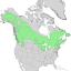 Betula papyrifera range map 1.png