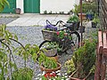 Bicycle as planter, Knocknaha - geograph.org.uk - 484766.jpg