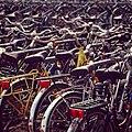 Bicycle parking (251561711).jpg