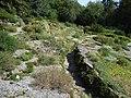 Bielefeld Botanischer Garten Alpinum 3.jpg