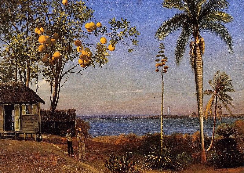 File:Bierstadt Albert A View in the Bahamas.jpg